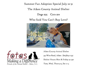 July Adoption Special