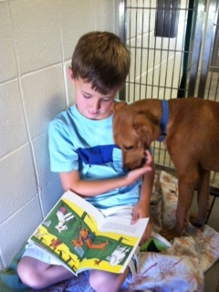 noah-reading-to-a-shelter-dog