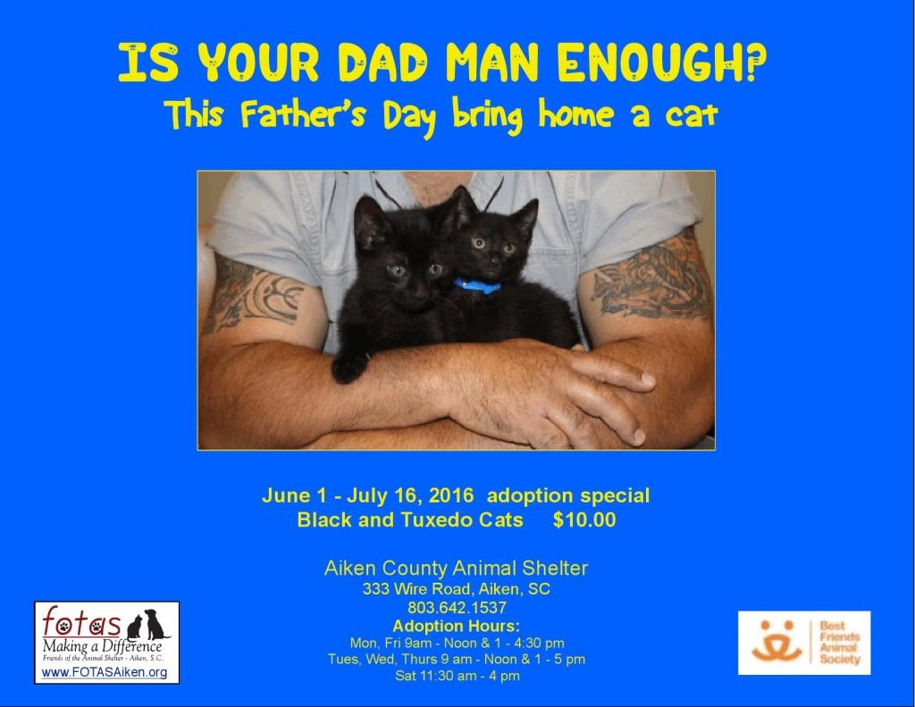 June 2016 Cat special_000001