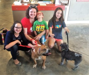 Biscuit was adopted by an Aiken family and now has a canine brother named Bear.