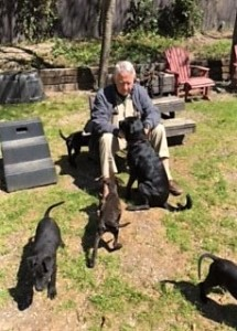 John Dabney fosters a litter of puppies to prepare them for adoption.