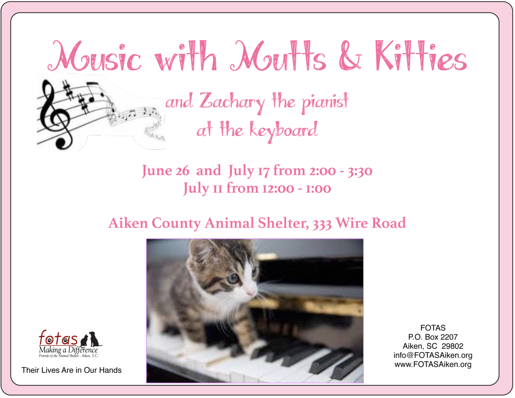Music-with-Mutts-&-Kitties-1